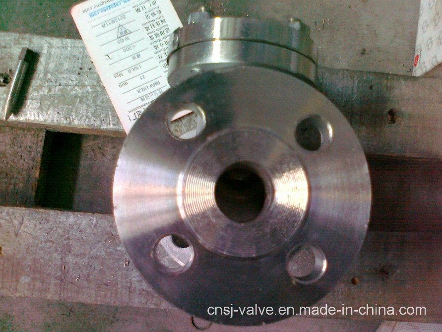 API Stainless Steel Flange Check Valve