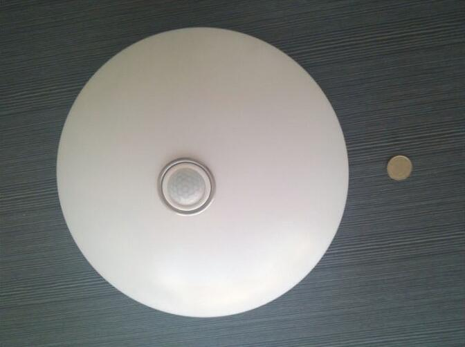 LED Bulb Round Pure White LED Ceiling Light