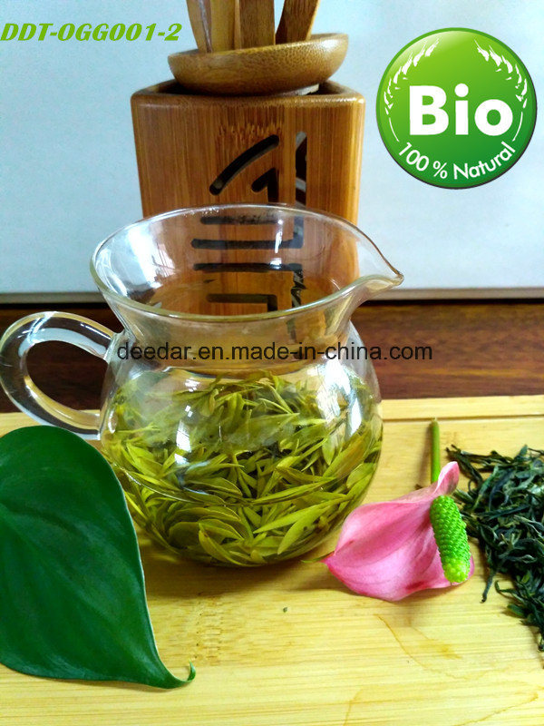 Health Drinking Tea