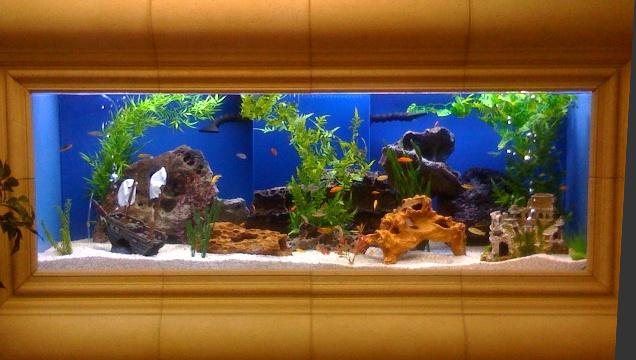High Quality Big Size Glass Fish Aquaria