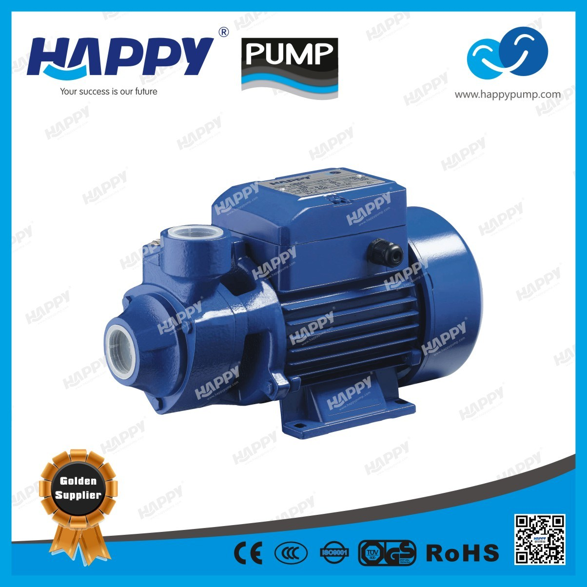 Electric Vortex Water Pump QB