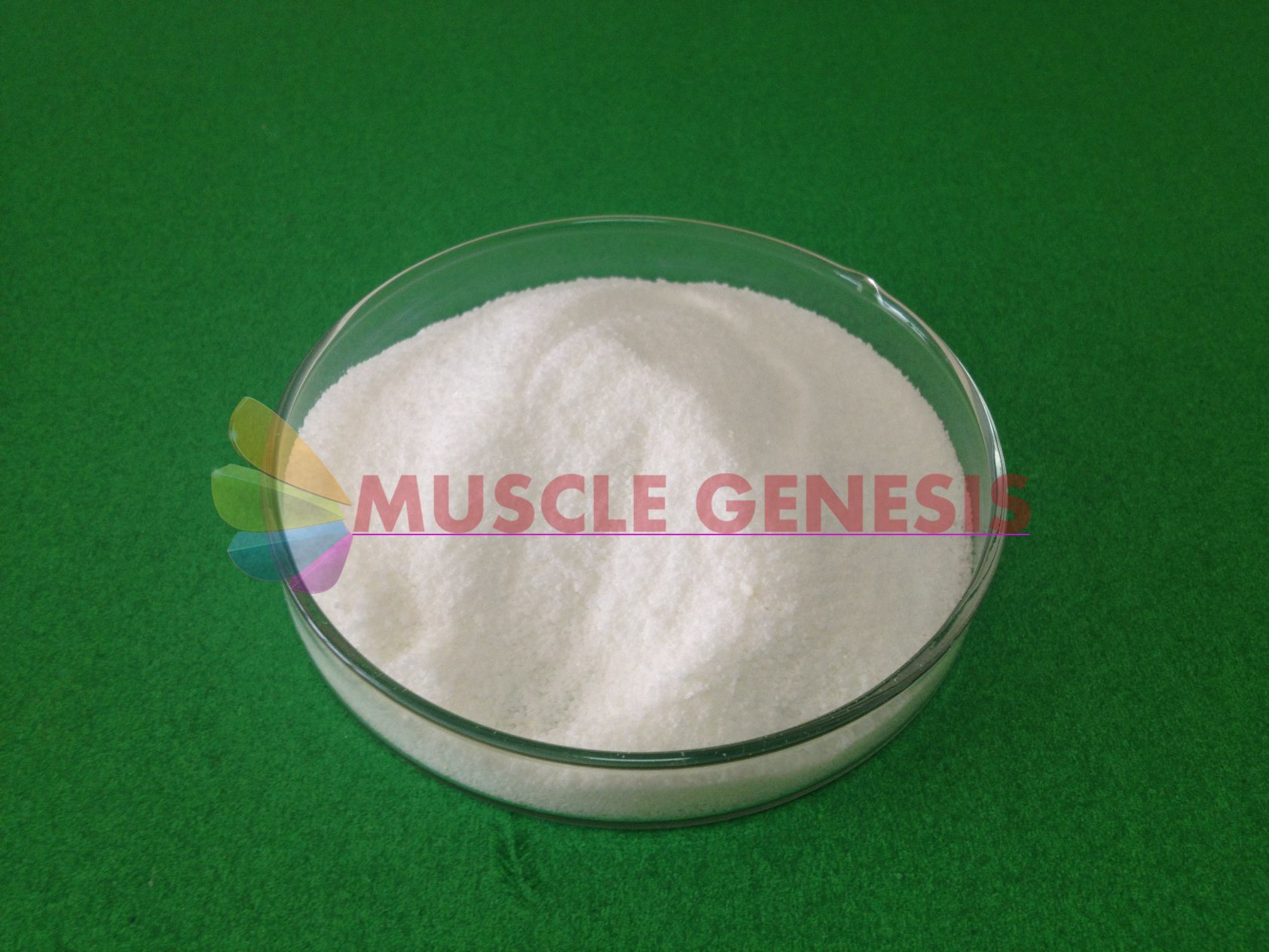 Steroid Hormones High Purity CAS No. 521-12-0 Drostanolone Propionate