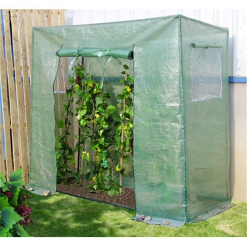 Tomato Greenhouse with PE Cover