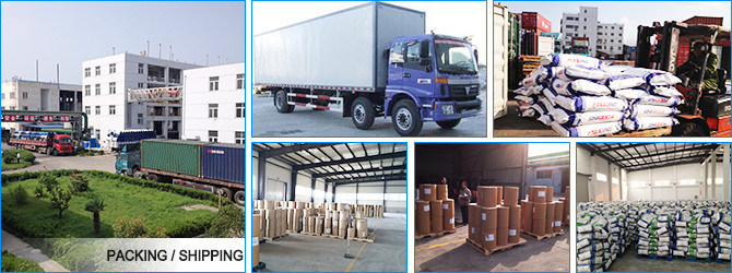 High Quality Pure Poultry Feed Additives Dl-Methionine