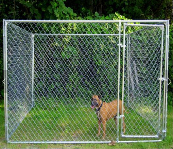 Metal Frame Galvanized Chain Link Dog Kennel/Large Dog Cage