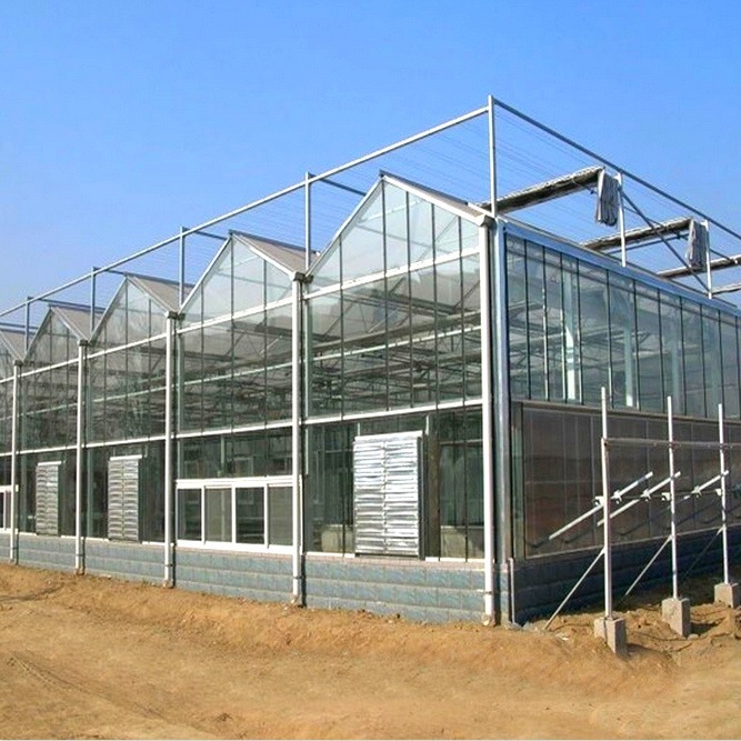 The Hot Sale Multispan Glass Greenhouse for Agriculture