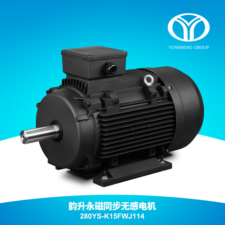 AC Permanent Magnet Synchronous Motor 110kw 1500rpm
