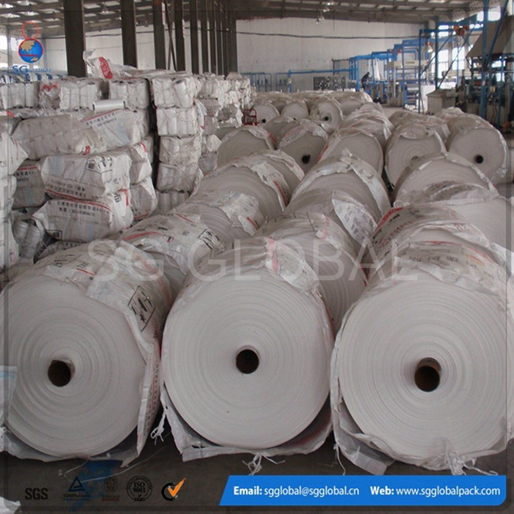 Professional Colorful PP Woven Fabric with High Quantity