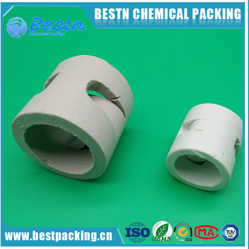 Excellent Acid Resistance and Heat Resistance Ceramic Pall Ring for Tower Packing