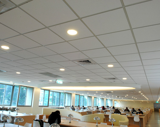 China Vinyl Laminated Gypsum Ceiling Tiles With Foil