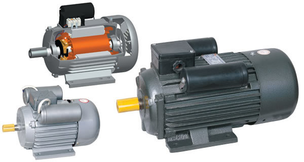 China Yl Single Phase Two Value Capacitor Induction Motor