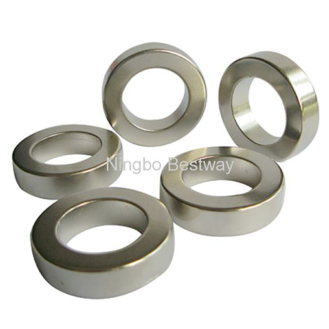 NdFeB Magnet Ring with Nickel Coating CE/RoHS Certified
