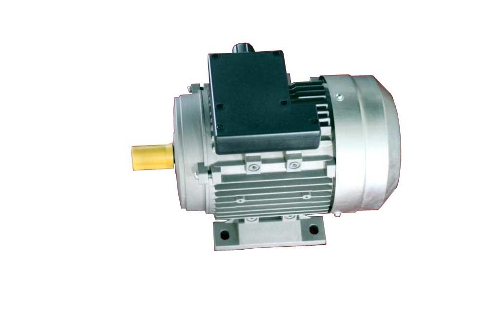 China Y2 Series Induction Motor 5 China Three Phase Induction Motor
