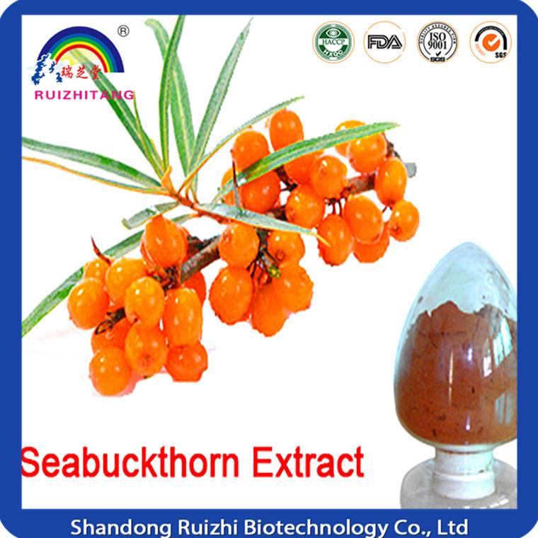 Organic Seabuckthorn Fruit Powder
