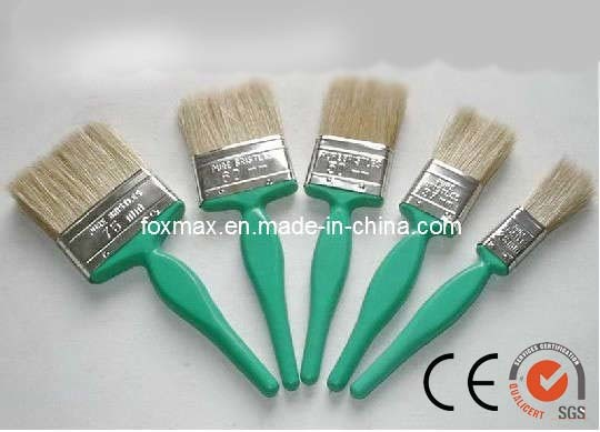Ce/SGS Paint Brush