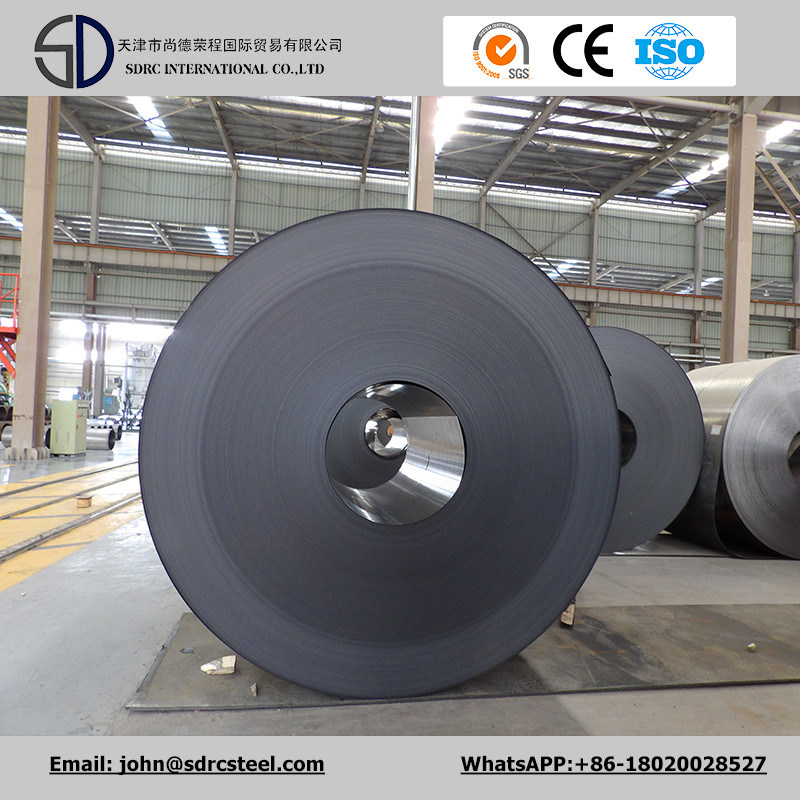 SPCC/DC01/CRC//Cold Rolled Steel Strip/Cold Coil Manufacturer