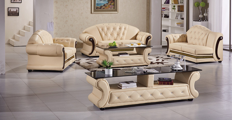 Dvany 3 Seater Leather Sofa Couch of Living Room Furniture