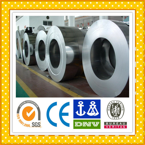 Stainless Steel Coil 304/316L/430/201