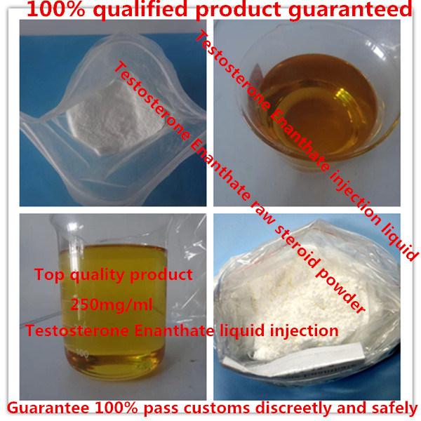 99% Purity Bodybuilding Anabolic Steroid Powder Testosterone Enanthate