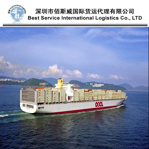 Sea Transportation Service, Container Shipping Freight Agent From China to Worldwide (FCL 20′′40′′)