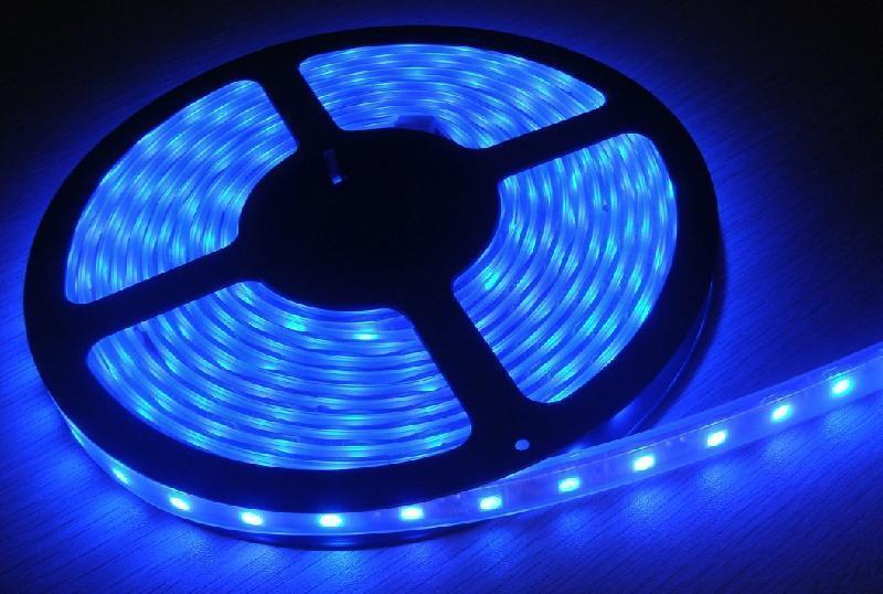 2835SMD LED Flexible Strip 5 Meters High Brightness