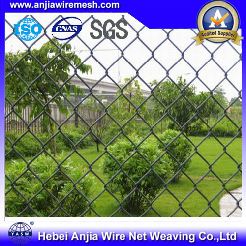 Galvanized / PVC Coated Chain Link Fence, Sport Fence