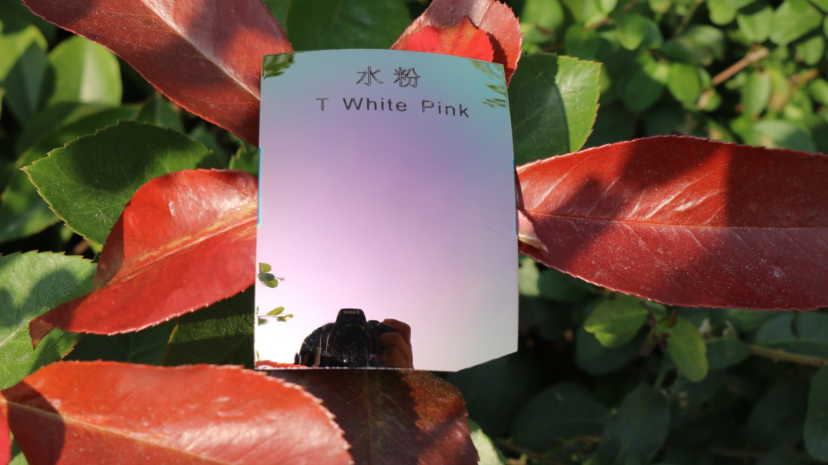 Colorful Eyeglasses Polarized Tac Lens (T White Pink)