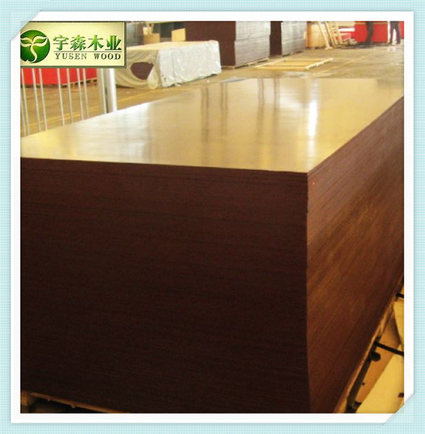 Furniture /Construction Use Plywood, Film Faced Plywood, Shuttering Plywood