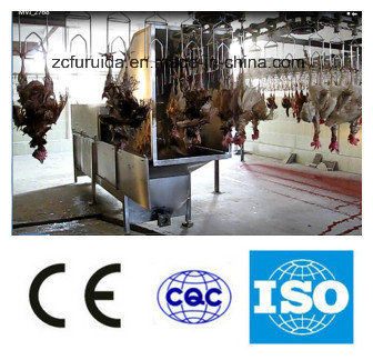 Chicken Scalding Machine/Poultry Plucking Machine/Slaughtering Machine/Poultry Equipment