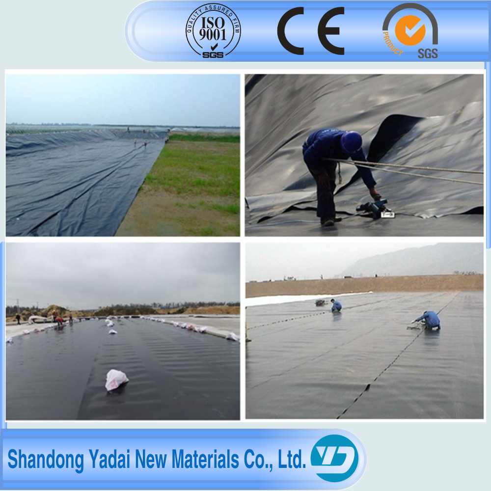 1mm Waterproofing Membrane Pond Liner LDPE EVA PVC HDPE Geomembrane