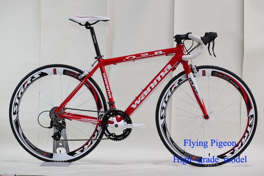 700C Sports Bike, Track Bicycle (FP-SPB-02)