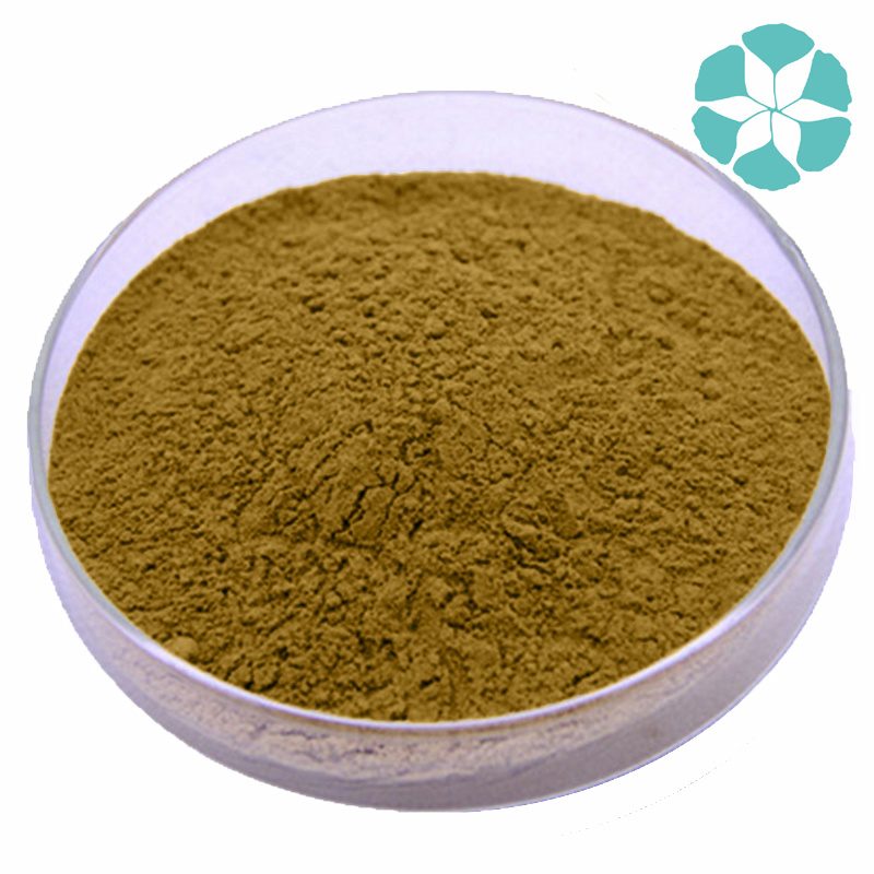 Siberian Ginseng Extract / Acanthopanax Senticosus Extract / Eleutherococcus Senticosus Extract / Eleutheroside