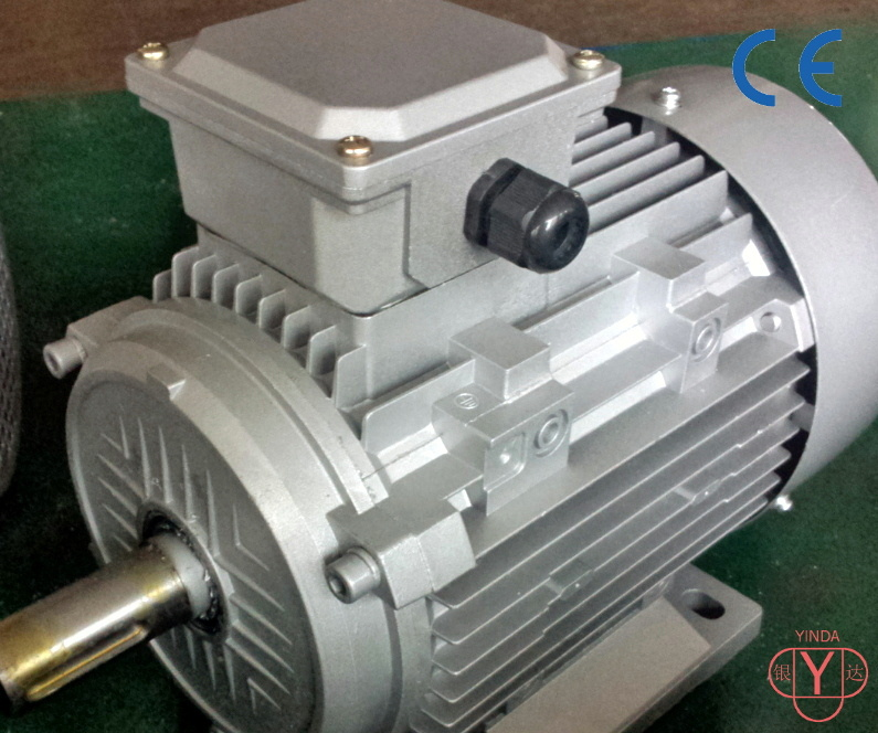 Three Phase AC Motor - IEC- Tefc (IP54) - Cast Iron Frame-Ie2