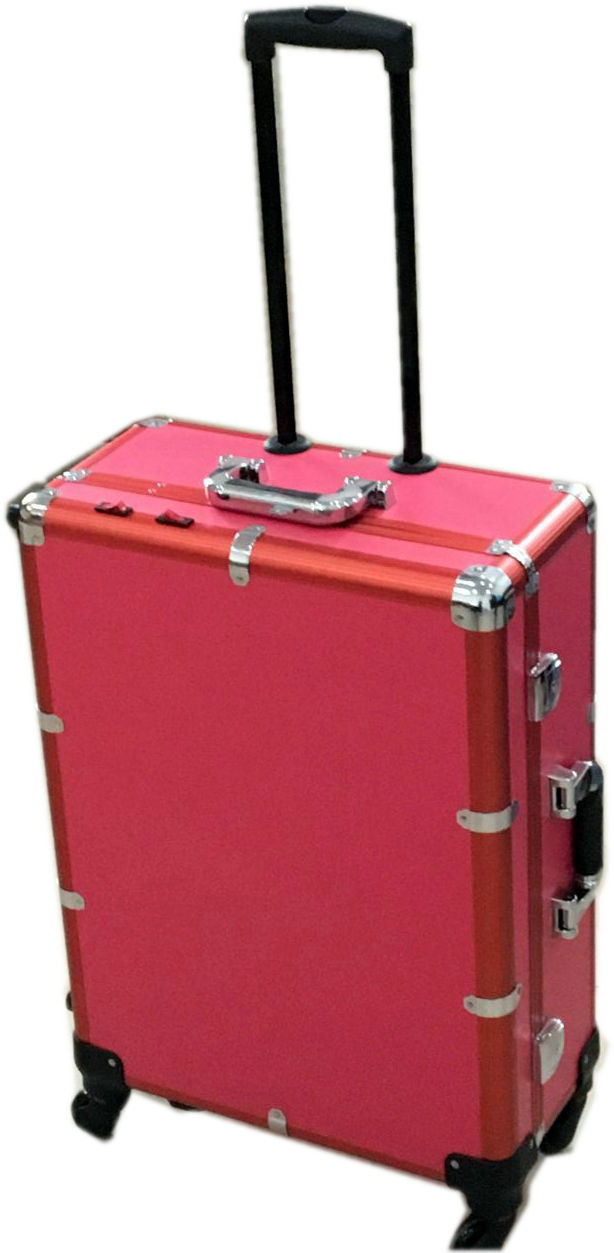 Professional Cosmetic Makeup Holder Studio Packaging Case (HB-3600)