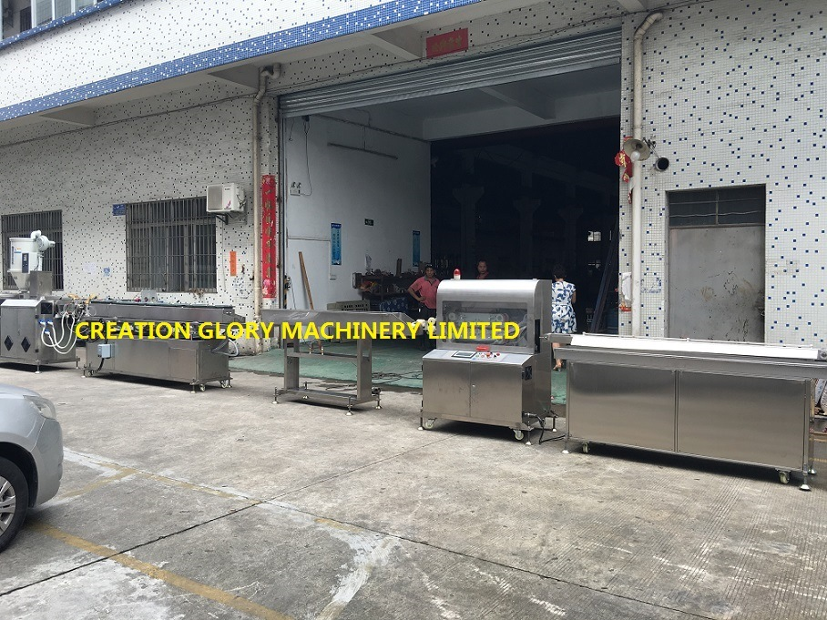 Hot Sale Stable Running Medical Tracheal Cannula Production Line