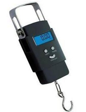 Digital Promotional Luggage Scale (BS-HS119)