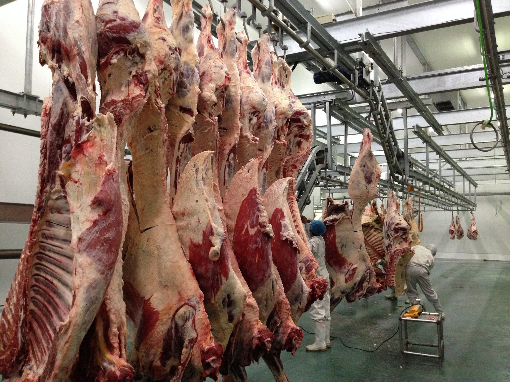 Cow Slaughtering Machine Made in China
