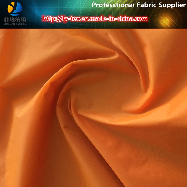 380t Nylon Taffeta, 20d Semi-Dull Taffeta with Downproof for Pocket Cloth (Nylon Fabric)