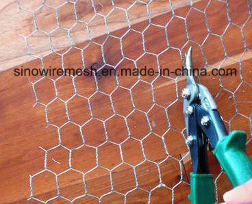 Sailin Steel Hexagonal Chicken Wire for Fruit Protection Fence