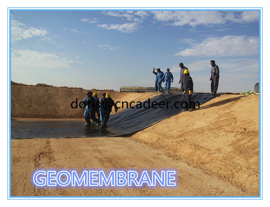 HDPE Pond Liner Geomembrane