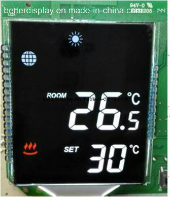 Customerized Va Type Monochrome Small Size LCD Screen Display