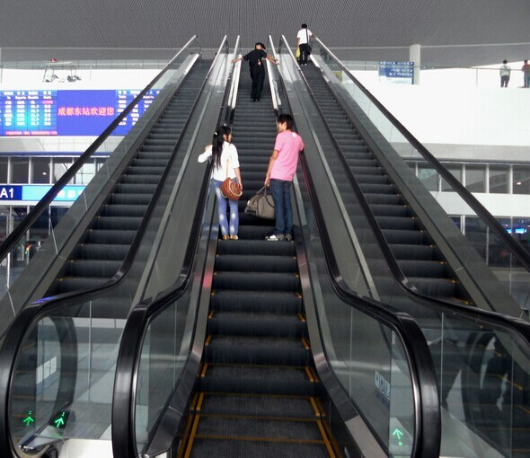 High Quality 800mm Width Escalator