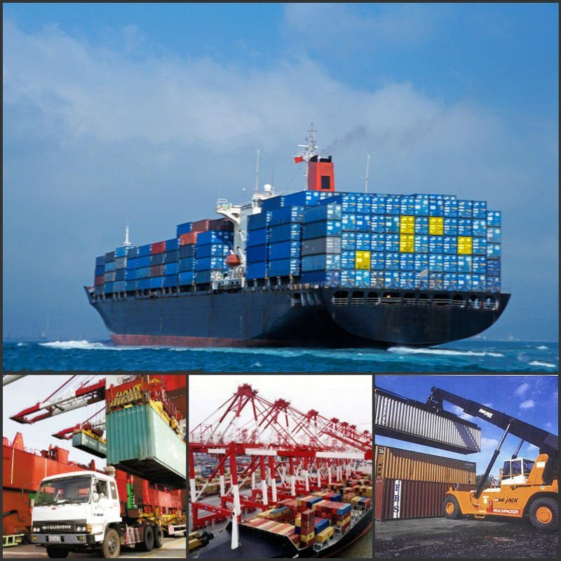 Logistics Company/Sea Cargo Shipping/Shipping Container/Shipping Agent/Shipping Company/Sea Freight Rates From China to Tin Can, Apapa, Lagos, Onne Nigeria
