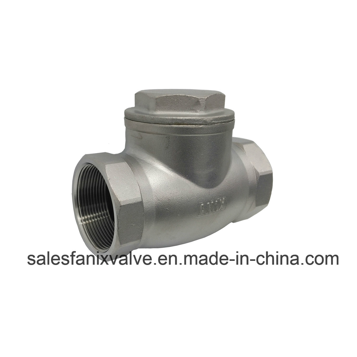 Stainless Steel Female Swing Check Valve (H14)