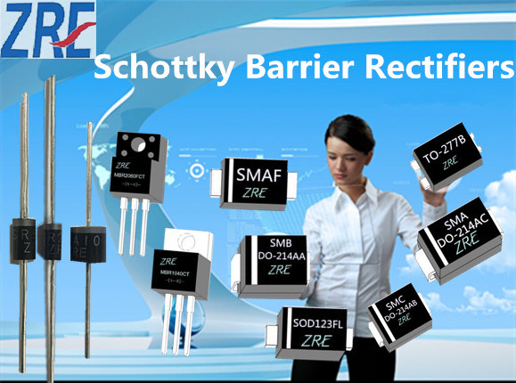 1A Schottky Bridge Rectifier Sb/R120 Thrusb/R1200 Do-41 Package