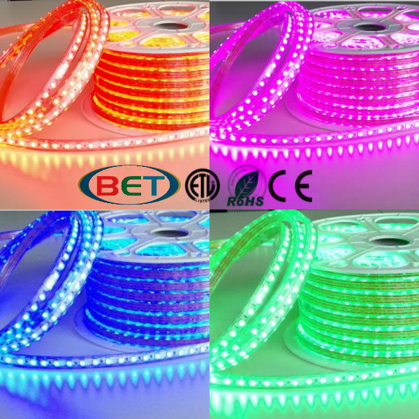 AC220V SMD2835 Rope Light LED Neon Flex 50m/Roll Christmas Decoration