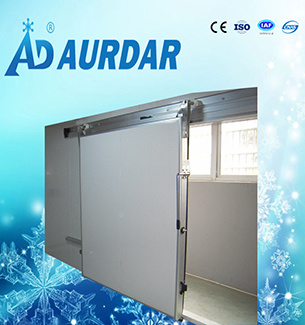 Small and Middle Seze Cold Storage for Chicken and Fish in China