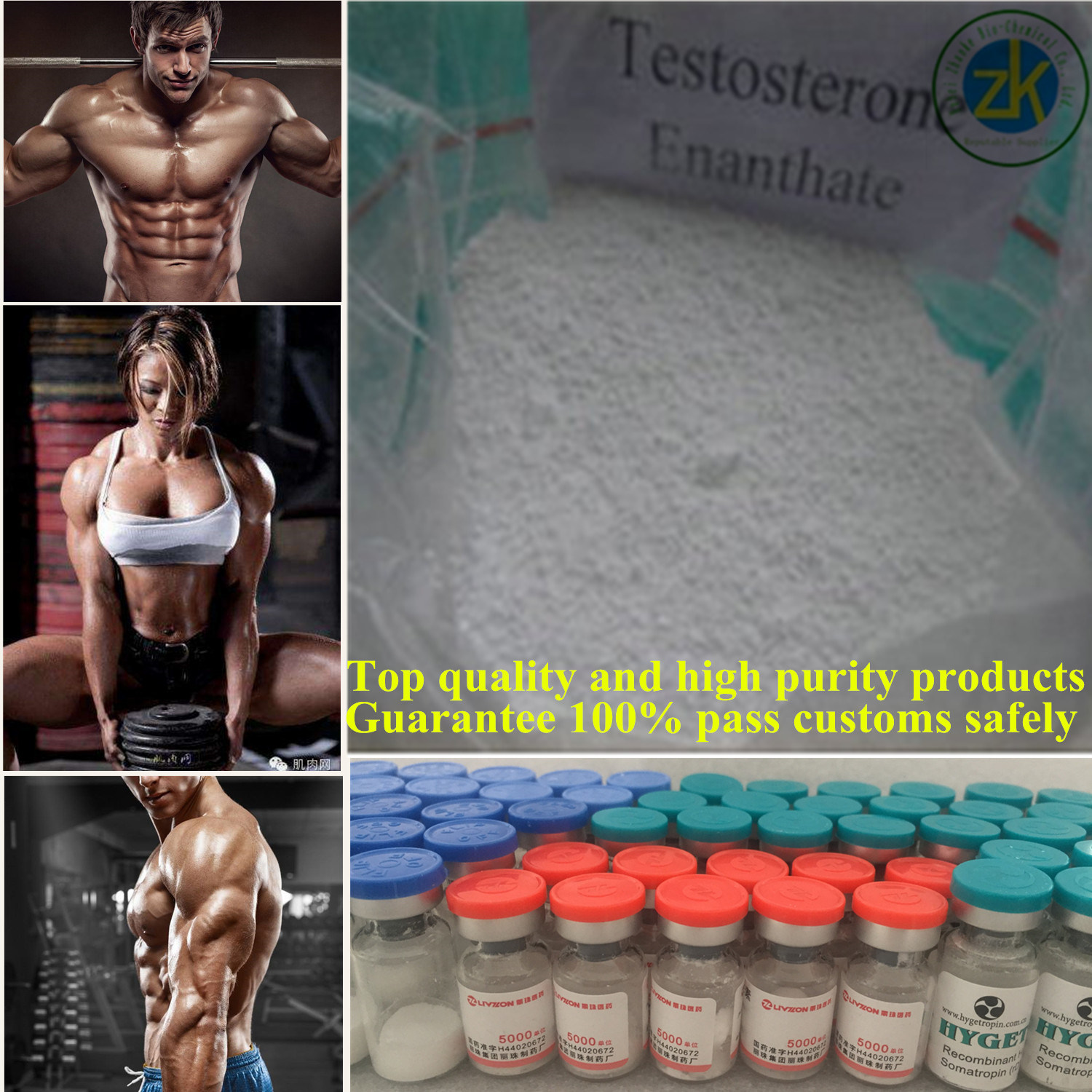 Factory Direct Sales Testosterone Enanthate for Muscle Growth Steroid Hormone