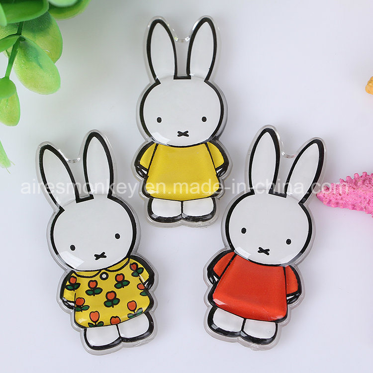 Miffy Acrylic Fridge Magnet Holland Souvenir Magnet