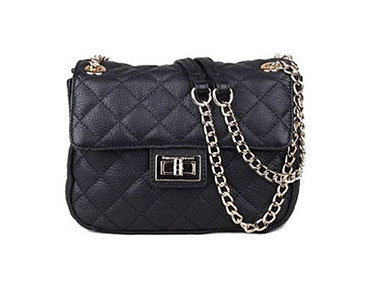 Ladies Handbag 17
